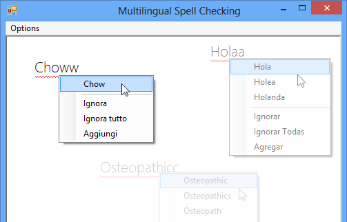 Multilingual Spell Checking